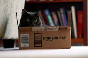 """Camilla & the Amazon Box"" by Reb (Flickr)"