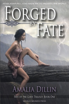 FxFATE-cover-72dpi